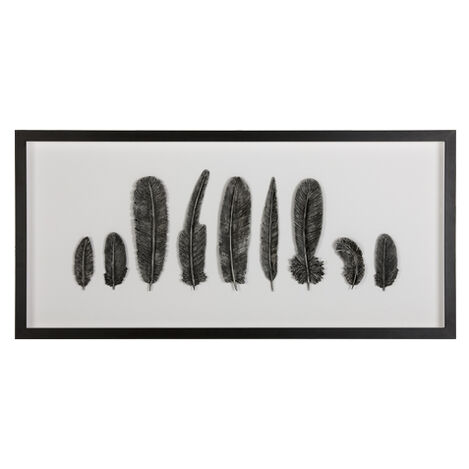 Black Heirloom Feathers ,  , large
