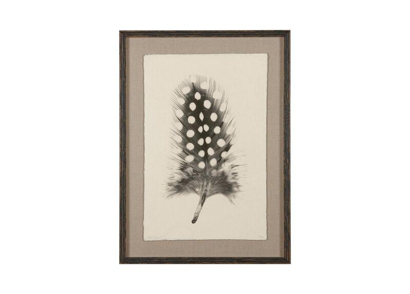 Feather Study I ,  , large_gray