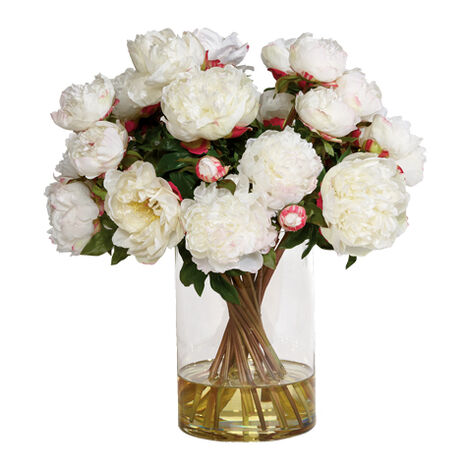 Tall White Peony Watergarden ,  , large