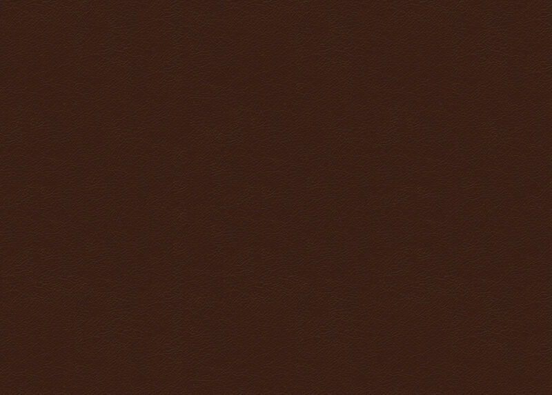 Trinity Chestnut Leather Swatch ,  , large_gray