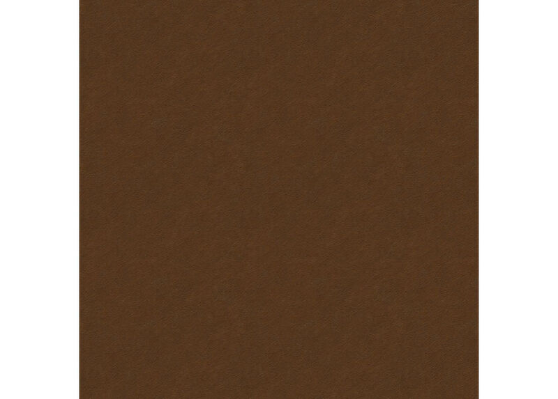 Pavia Brown Swatch ,  , large_gray