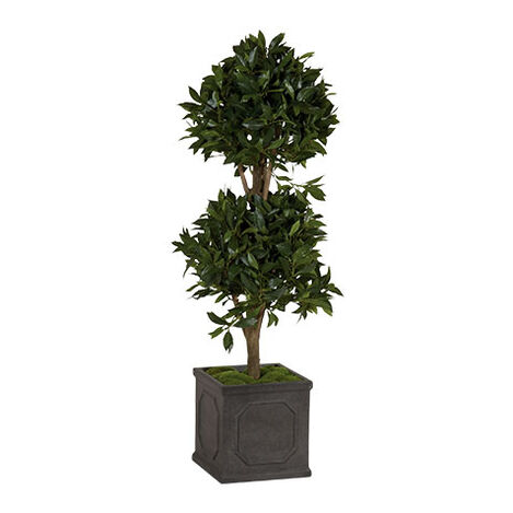 Double Bayleaf Ball Topiary ,  , large