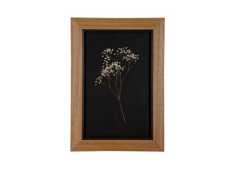 Botanicals on Black I ,  , large_gray
