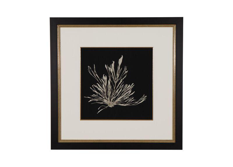 Seaweed on Black III ,  , large_gray