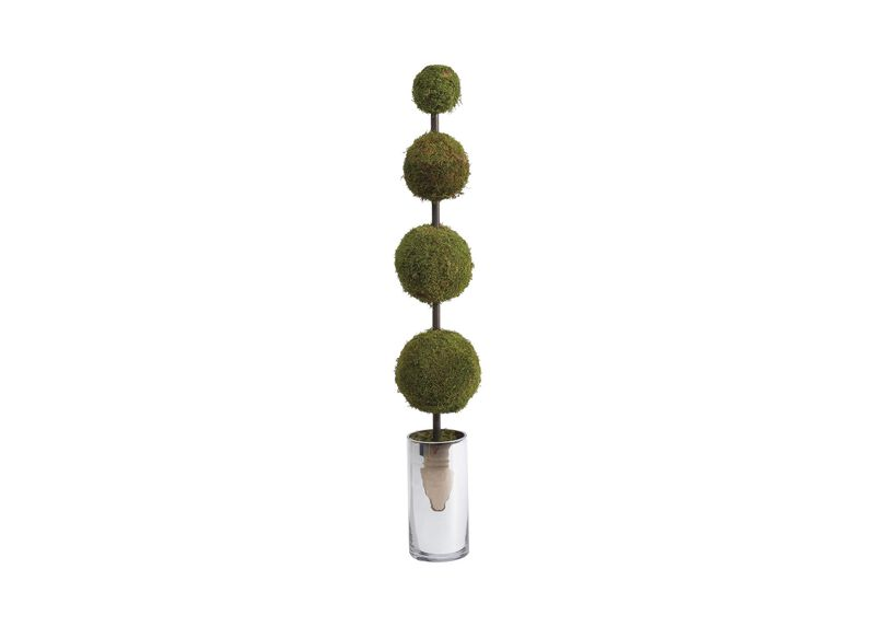 Moss Ball Topiary ,  , large_gray