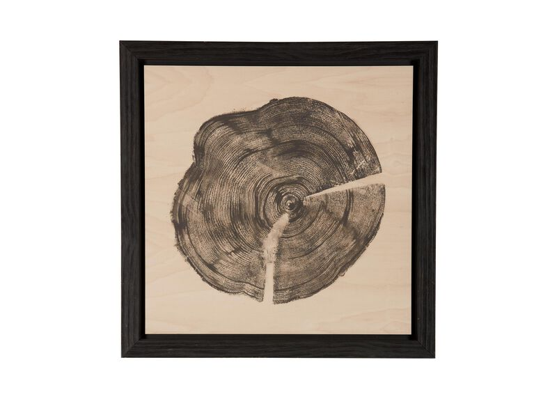 Wood Slice I ,  , large_gray