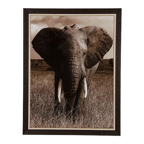 Elephant ,  , large
