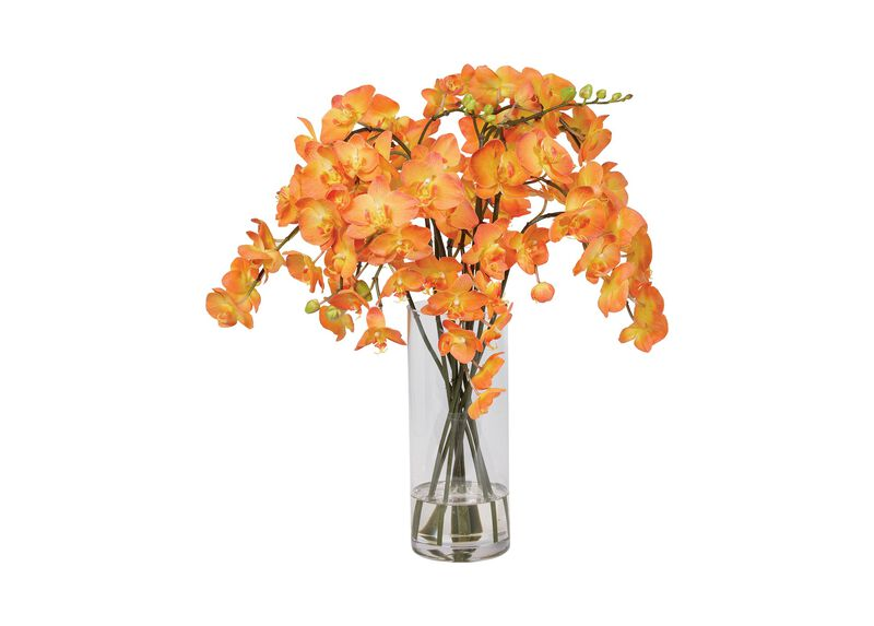 Orange Orchids in Glass Vase ,  , large_gray