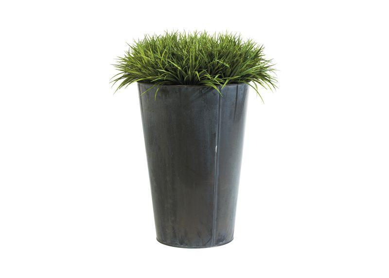 Grand Grass Tin ,  , large_gray
