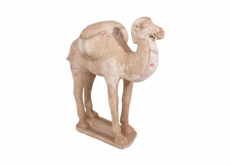 Tang Camel ,  , large_gray