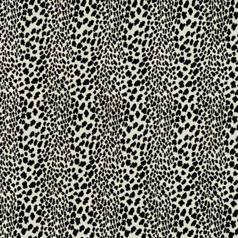 Congo Black Fabric ,  , large