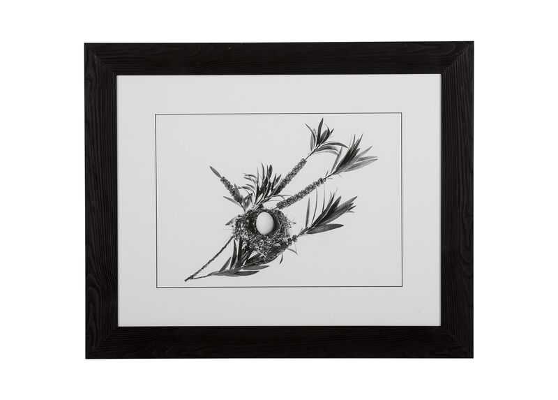 Graphic Nest II ,  , large_gray