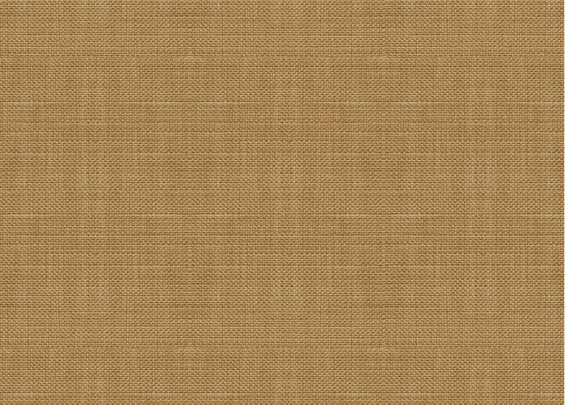 Springer Honey Fabric ,  , large_gray