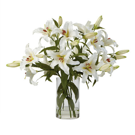 Casablanca Lily Watergarden ,  , large