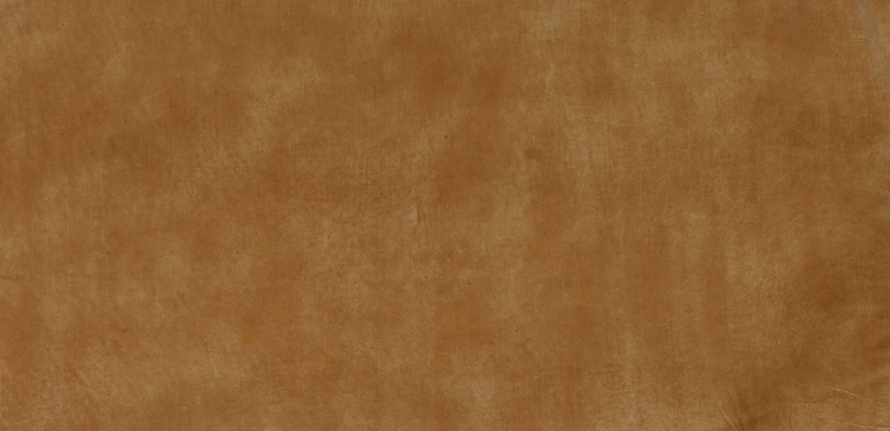 Maynard Camel Leather Swatch Ethan Allen