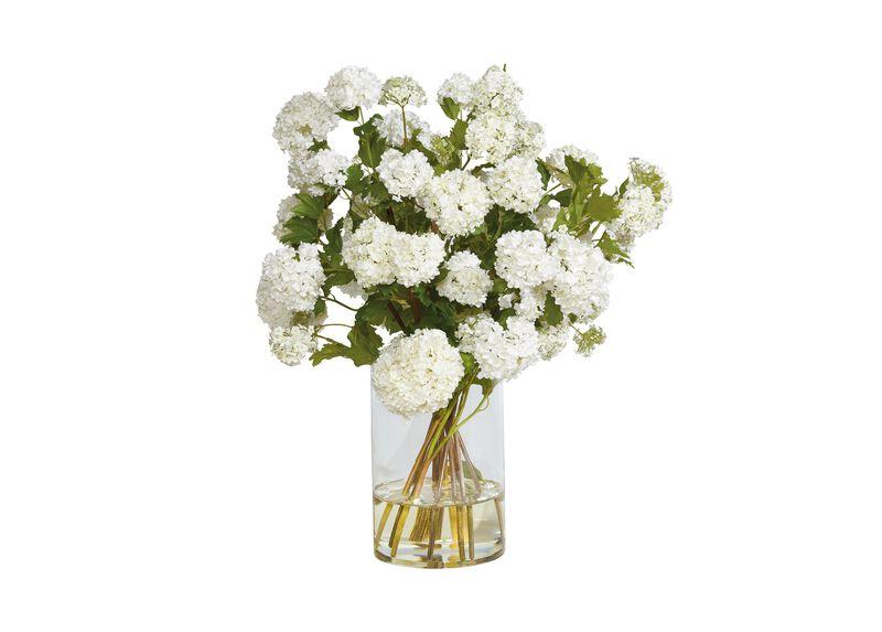 White Snowball Watergarden