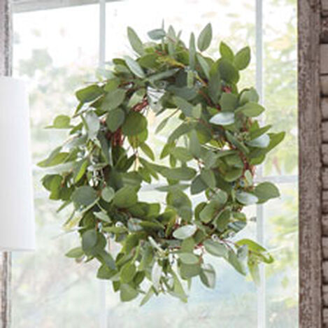 """24"""" Seeded Eucalyptus Wreath Product Tile Hover Image 442234"""