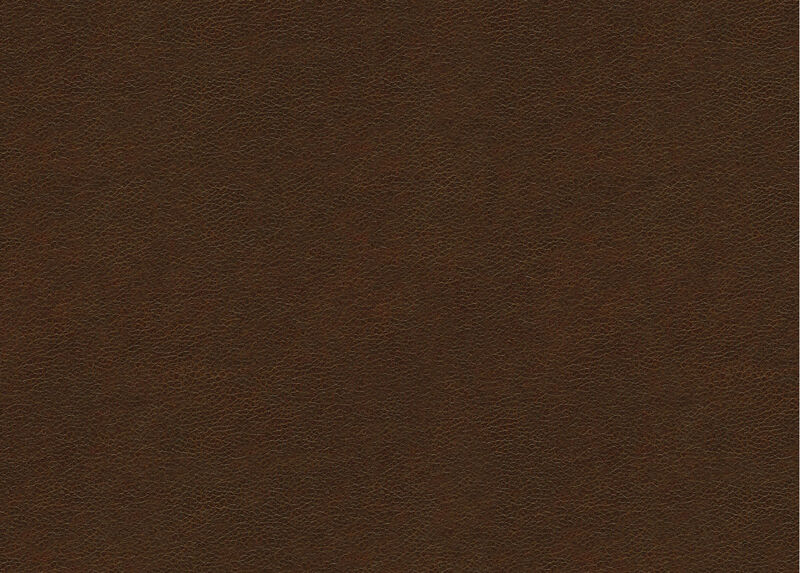 Omni Tobacco Leather Swatch