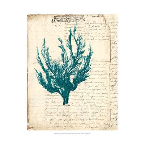 Vintage Teal Seaweed V ,  , large