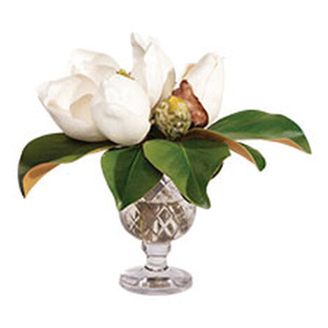 Magnolia Bouquet in Glass Vase Product Tile Hover Image 442203