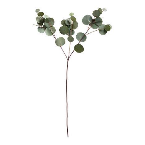 "32"" Silver Dollar Eucalyptus Branch  (set of 2) Product Tile Image 441904"