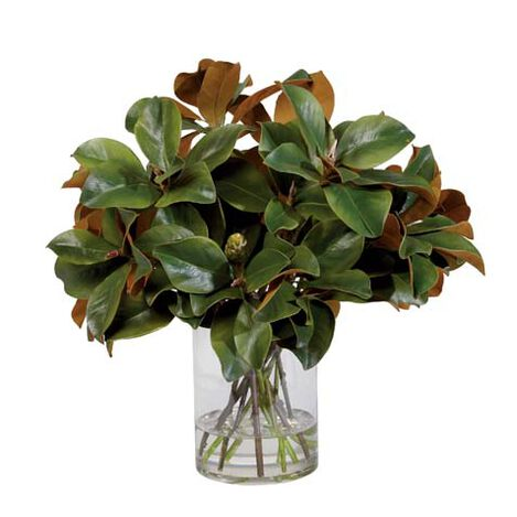 Magnolia Leaves Watergarden Product Tile Image 446630