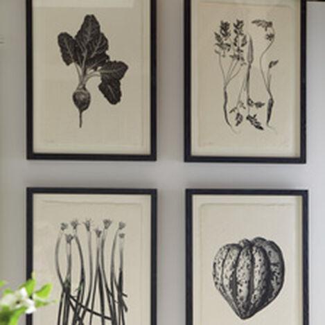 Vegetable Study II ,  , hover_image