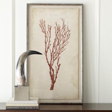 Antique Coral Specimen A Product Tile Hover Image 073009A