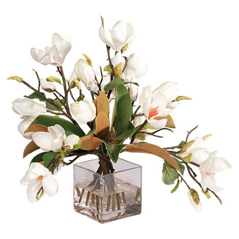 Magnolia Foliage Watergarden in Glass Cube Product Tile Image 442204