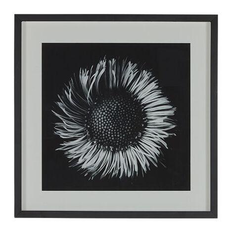 Black Botanical II Product Tile Image 073104B