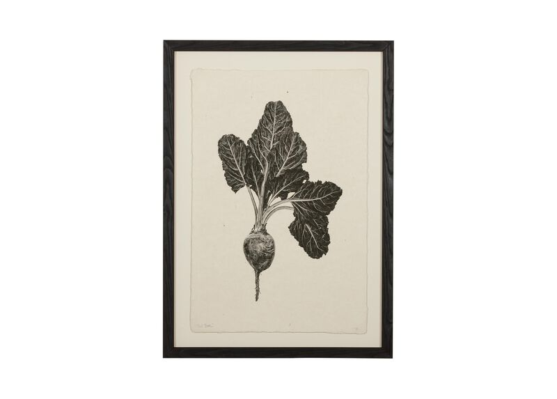 Vegetable Study II ,  , large_gray