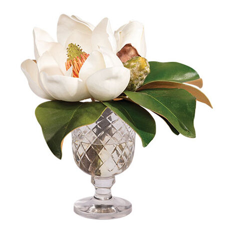Magnolia Bouquet in Glass Vase Product Tile Image 442203