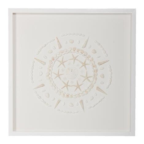 Shell Circle I ,  , large