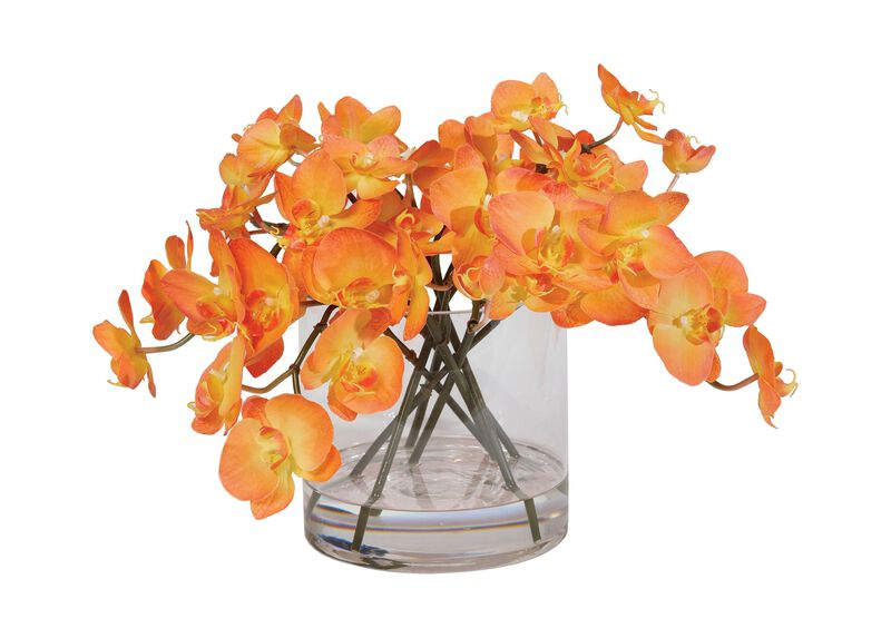 Orange Orchids in Glass Cylinder ,  , large_gray