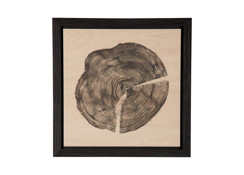 Wood Slice I