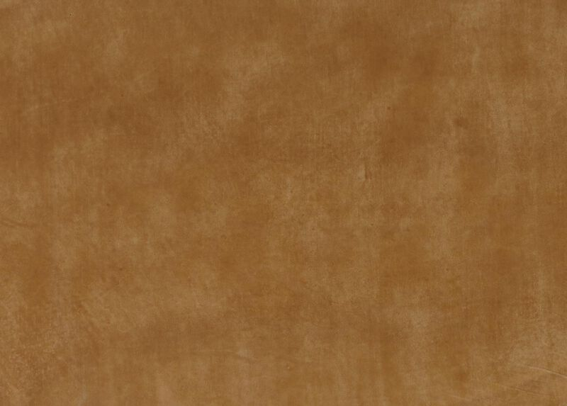 Maynard Camel Leather Swatch
