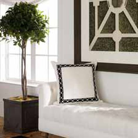Single Bayleaf Ball Topiary ,  , hover_image