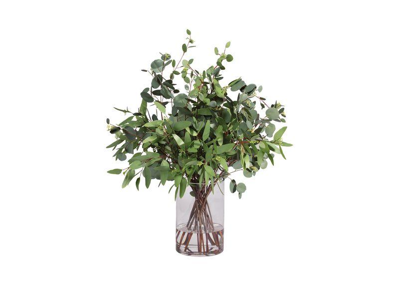 Eucalyptus in Cylinder Vase