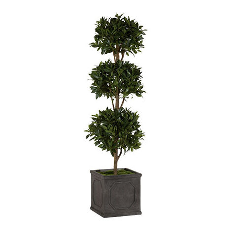 Triple Bayleaf Ball Topiary ,  , large