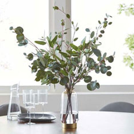 Eucalyptus in Lantern Vase Product Tile Hover Image 442232