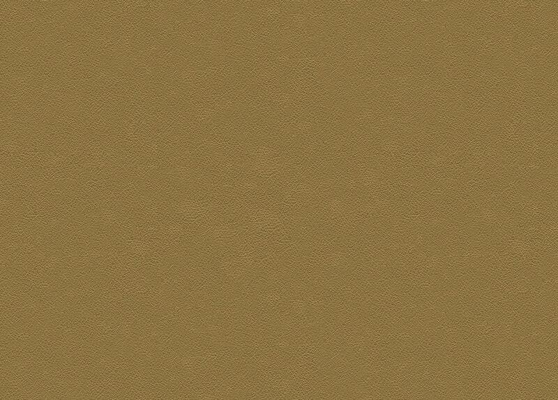 Sherwood Tan Leather Swatch