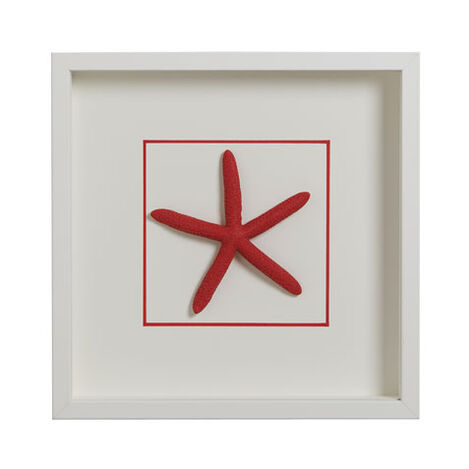 Hand-Colored Starfish ,  , large
