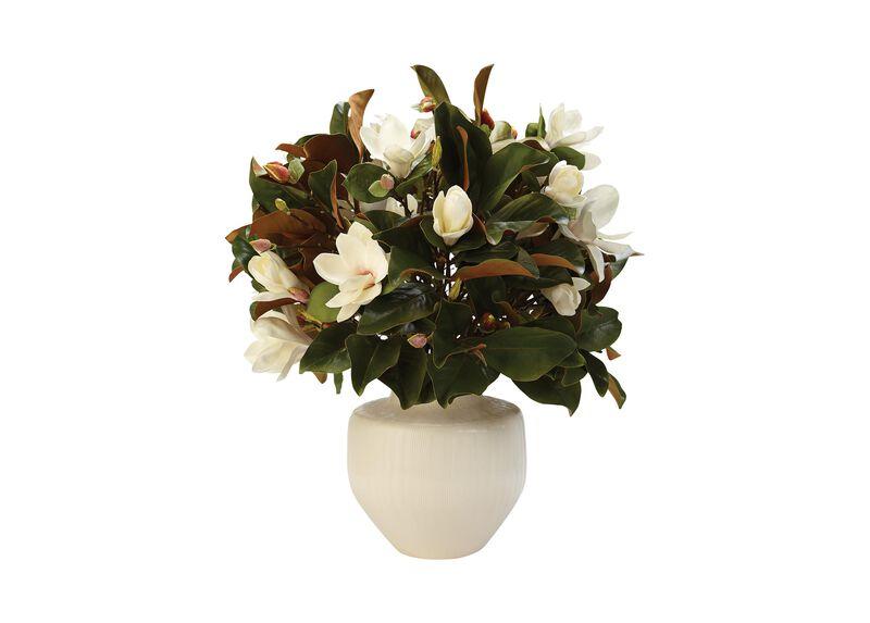 Magnolia Flower Bouquet in Tuscan Vase