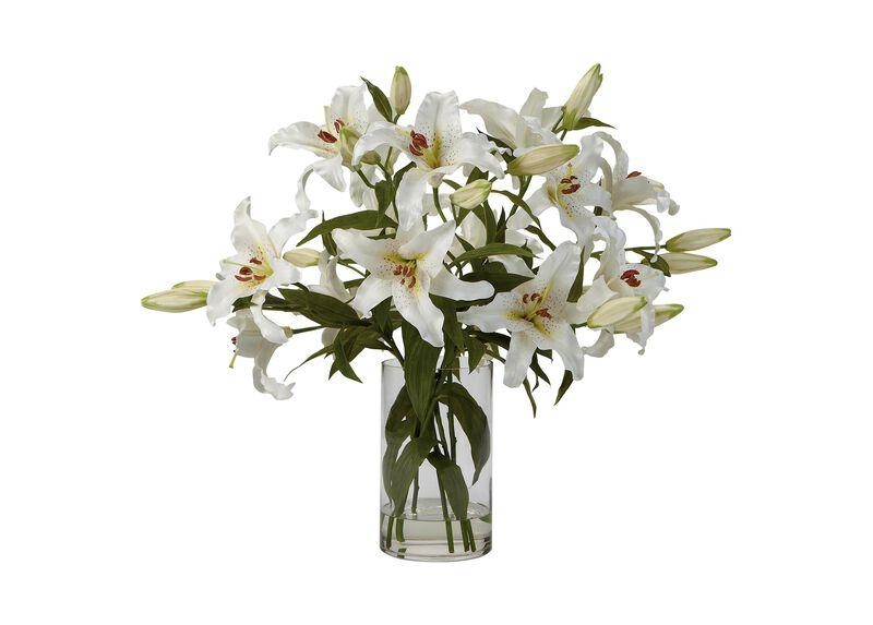 Casablanca Lily Watergarden