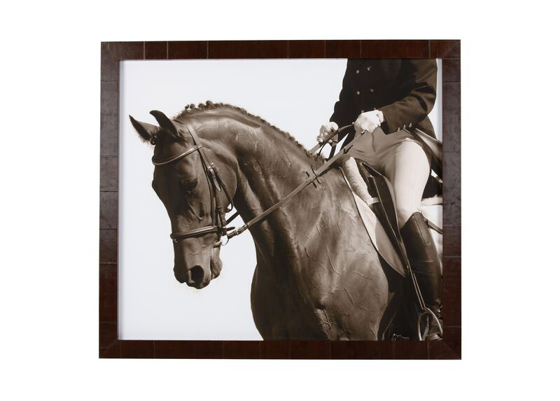 Show Horse ,  , large_gray
