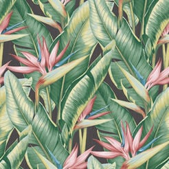 Arcadia Banana Leaf Wallpaper Recommended Product
