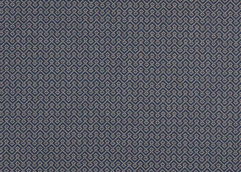 Lucas Navy Fabric