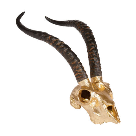 Gold Leaf Impala Skull Replica ,  , large