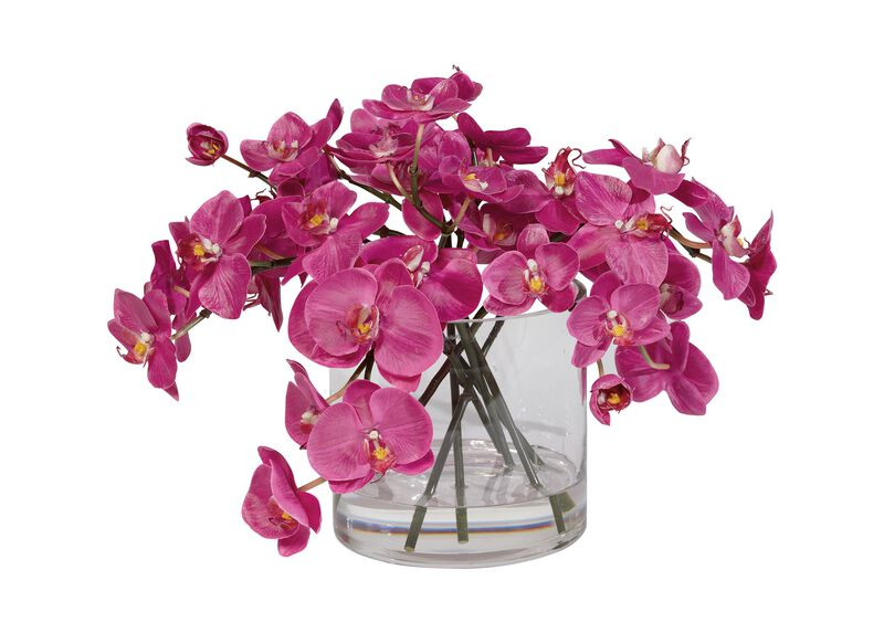Fuchsia Orchids in Glass Cylinder