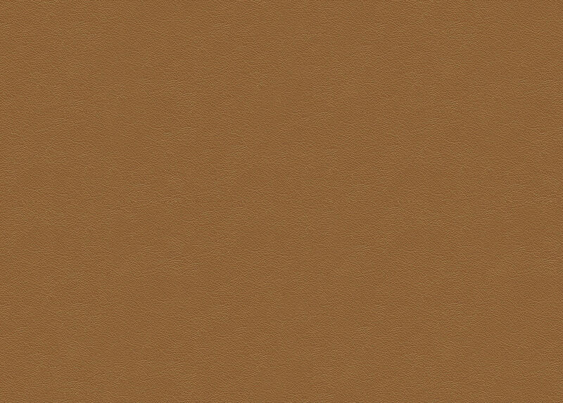 Sherwood Camel Leather Swatch